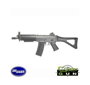 Swiss Arms Sig 552 commando Abs
